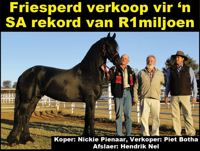 FIRES horse sold-R1-MILLION