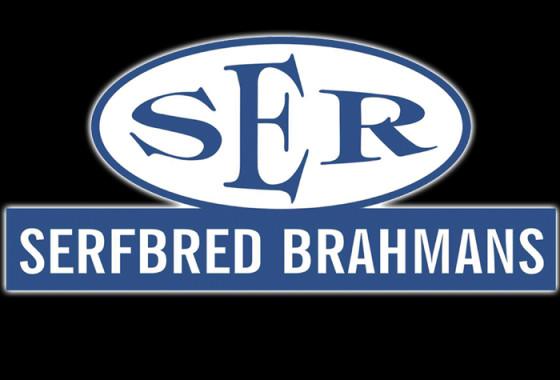 SERFBRED BRAHMANE