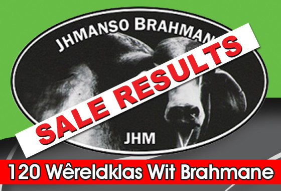 JHManso Brahmane Prod Veiling - Web blokkie