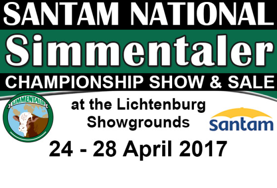 Simmentaler Nasionale kampioenskappe Veiling 2017 web blokkie