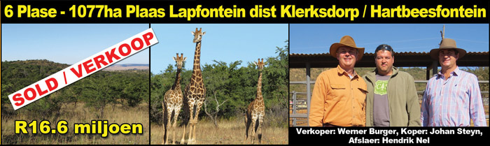 sale-lapfontein